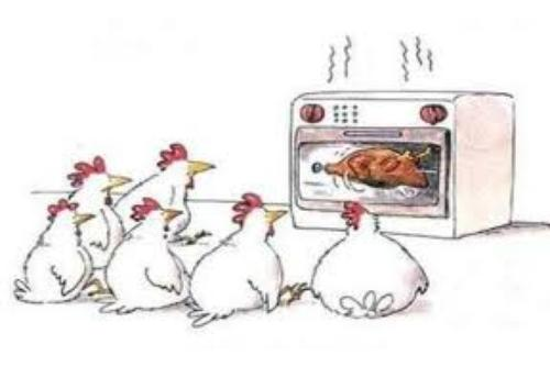 Did You that Perfectly Baked Chicken? Or Turkey Maybe?